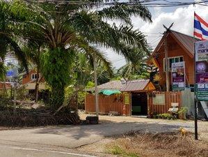 6 Days Yoga and Healing Retreat in Krabi, Thailand