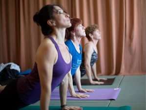 10 Days 100-hour Intensive Yoga Teacher Training Texas