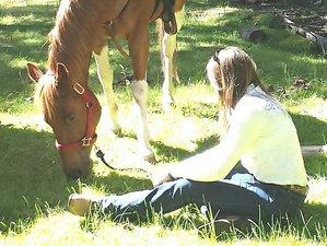 7 Days Family Ranch Vacation in Trinity, California