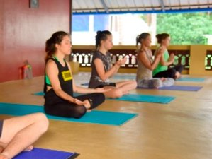 28 Day 200-Hour Yoga Teacher Training (Hatha, Hatha Flow & Ashtanga Vinyasa) in Kerala
