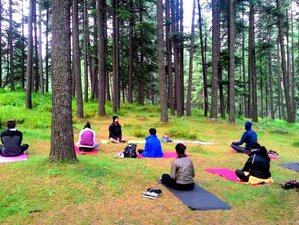 6 Day Mind-Body Healing, Meditation, and Yoga Retreat in Palampur (HP)