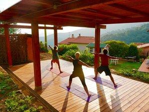"""Yoga & Shinrin Yoku """"Bäume lernen uns mit unserem Herzen zu sehen und auf unser Herz zu hören"""""""