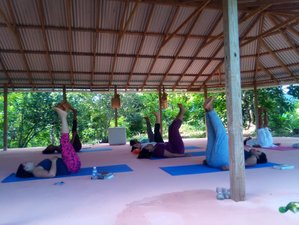 8 Days Relax, Realign, and Reset Yoga and Meditation Retreat in Jamaica