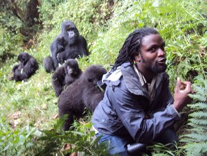 5 Days Gorilla Safari in Uganda
