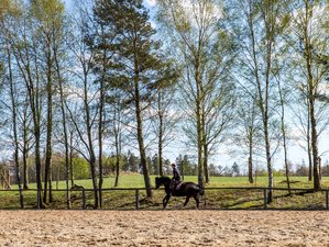 3 Day Short Break Forest Horse Riding Holiday with Riding Classes in Gniewino, Poland