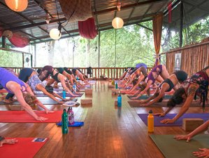 6 Days Private Surf, Meditation, and Yoga Retreat in Platanillo, Costa Rica