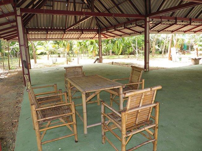3 días sanación divina y retiro de yoga en Ko Samui, Tailandia