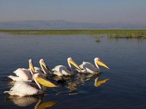8 Days Breathtaking Wildlife Tour in Ethiopia