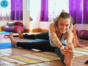 Self-Paced 300-Hour Multi-Style Online Yoga Teacher Training