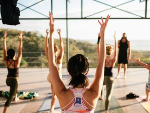 13 Day 100-Hour Ashtanga Vinyasa Yoga Training in Nosara, Guanacaste