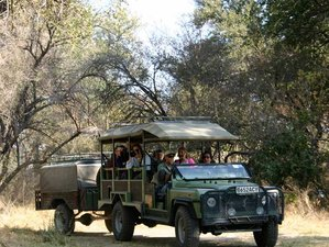 5 Days Private Safari in Botswana