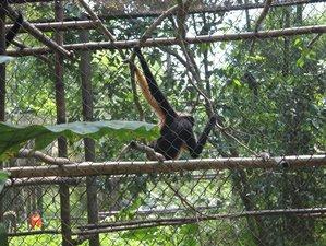 3 Days Trekking and Wildlife Tour in Ninh Binh, Vietnam