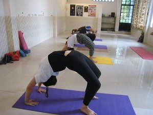 11 Days Adventure Yoga Retreat in India