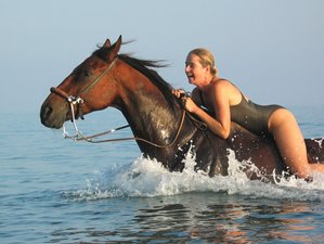 8 Days Guided Lassithi Trek Horse Riding Holiday in Crete, Greece