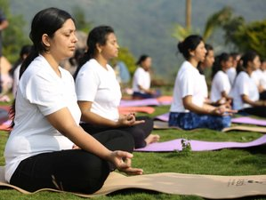 15 Day Flexible 200-Hour Level 1 Yoga Protocol Instructor (YPI) in Pune