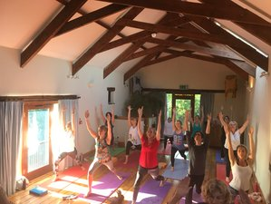 3 Days Various Yoga, Meditation, Cacao Sound Healing Week-End in Totnes, Devon, UK