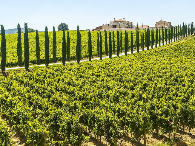 6 Days Tuscany Wine Tours