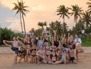 22 Day Small Group 200-Hour Alignment Vinyasa Yoga Teacher Training in Ahangama, Southern Province