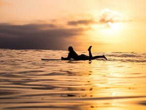 8 Day Surf & Soul Yoga Holiday in Goa