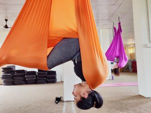 6 Days 50-Hour Aerial Yoga Teacher Training Dharamshala, India