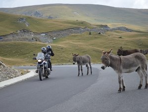 18 Days Romania Loop Guided BMW Motorcycle Tour in Southeast Europe