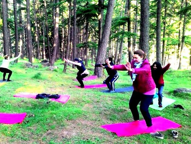 15-Daagse Lichaam, Geest en Emotionele Wellness Yoga Retreat in Manali, India