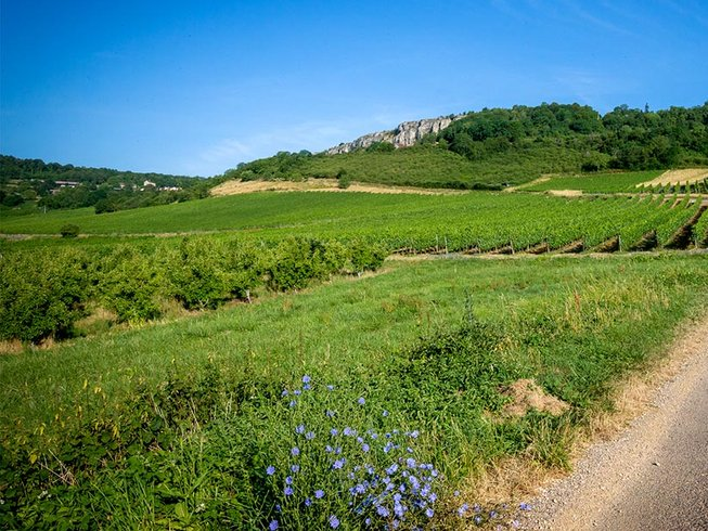 4 Days Burgundy Life, Wine & Food Holiday France