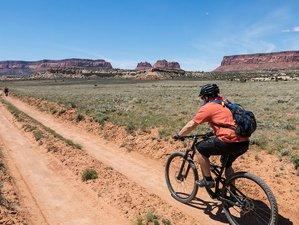 5 Days The Maze Mountain Bike Tour in Utah, USA