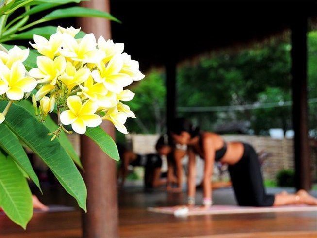 8 Days Chakra and Yoga Retreat in India