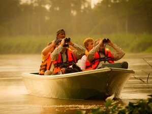 5 Days East Coast Wildlife Adventure in Sepilok, Kinabatangan River, and Danum Valley, Malaysia
