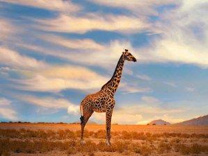 4 Days Safari Group Tour in Tarangire, Serengeti, and Ngorongoro Crater, Tanzania