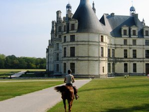 4 Days Thrilling Horse Riding Holiday in Loir-et-Cher, France