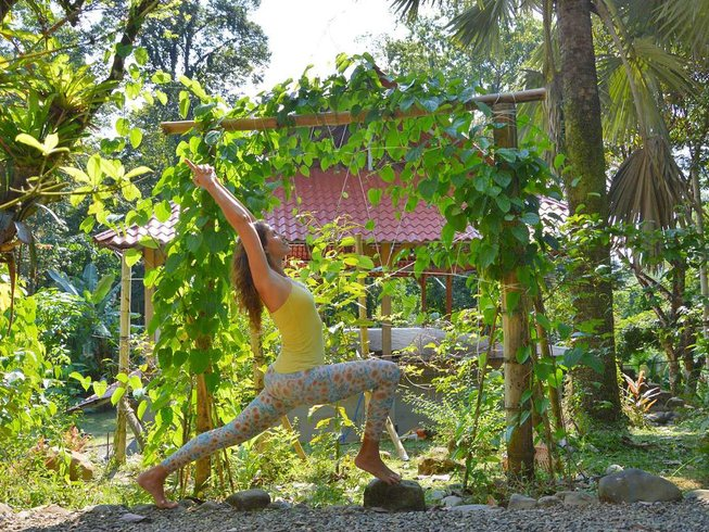 8-Daagse 70-Urige Slow Motion Yin Yoga Docentenopleiding in Puerto Viejo, Costa Rica