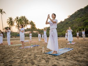 28 Day 200-Hour Yoga Teacher Training in Goa