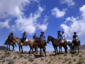10 Day Crossing the Andes Horse Riding Holiday in Argentina