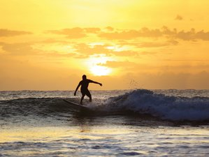 8 Day Beginner Yoga Holiday and Surf Camp with Tours and Cookery Class in Arugam Bay, Sri Lanka