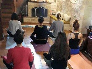 16 Day 200-Hour Vinyasa, Hatha & Restorative Online Yoga Teacher Training