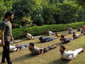 8 Days Rejuvenating Yoga and Meditation Retreat Rishikesh, India