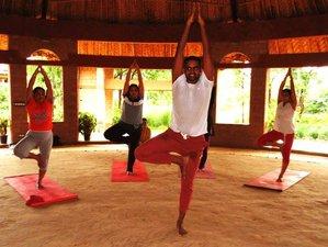 15 Days Pilgrimage, Meditation, and Yoga Retreat India