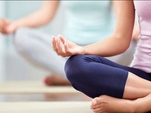 8 Days Transformation Yoga Retreat in Santiago de Compostella, Spain