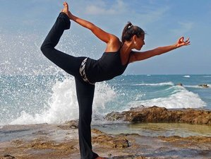 6-Daagse Rawfood en Yoga Retraite in Barbados