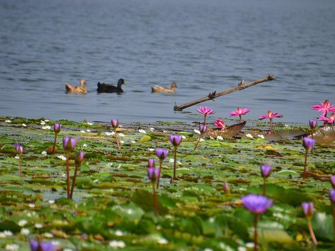 14-Daagse Ayurvedische Yoga Retraite in Kerala, India