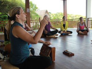 27 Days 200-Hour Yoga Teacher Training Goa, India