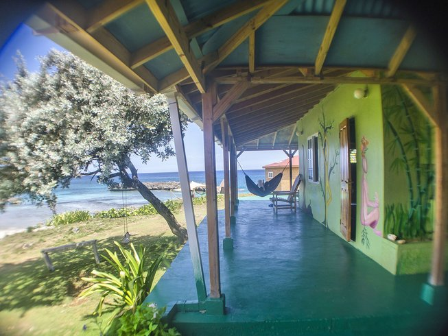 6 Days Juicing, Detox, and Yoga Retreat in Jamaica