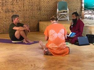 8 Days Intensive Osho Meditation Retreat in Morjim Beach, India