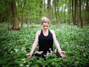 7 Day Yoga, Meditation, Hiking, Forest and Beach Bathing Holiday Olympic National Park, Washington