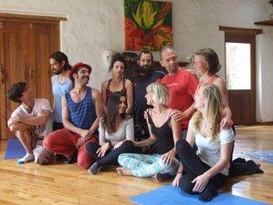 7 días clases de idiomas y retiro de yoga en Ecuador