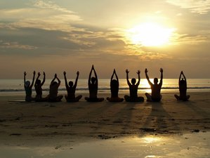 8 Day Rejuvenation and Detox: Meditation, Ayurveda and Yoga in Goa