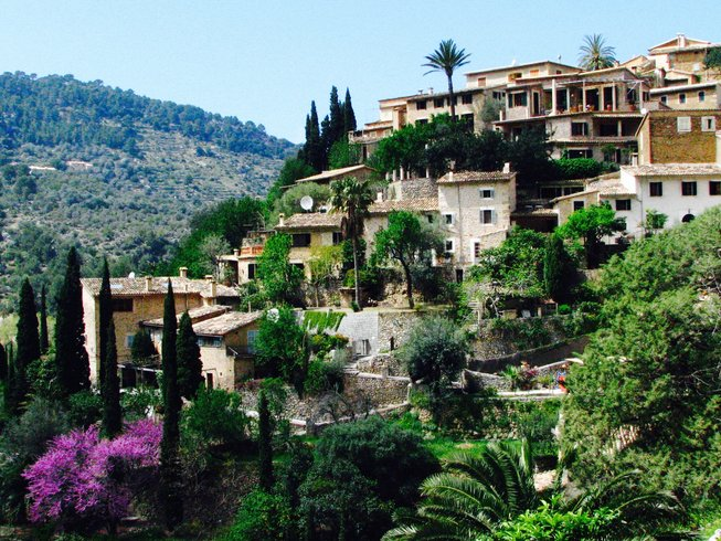 8 Days Yoga and Wellness Retreat in Mallorca, Spain