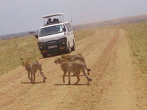 7 Days Wonderful Kenya Safari and Tour